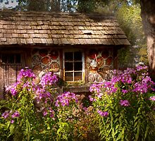Garden - Belvidere, NJ - My little cottage by Mike  Savad