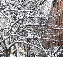 Jersey City, New Jersey, Wet Snow View by lenspiro