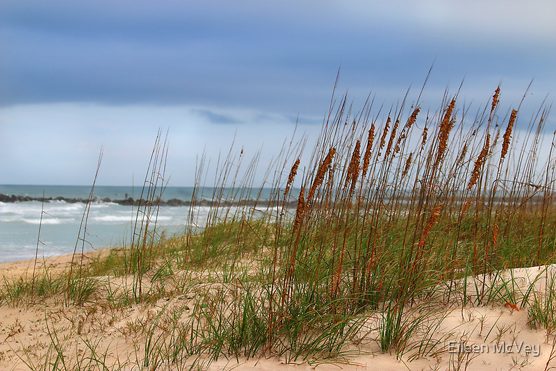 Windy Beach by Eileen McVey