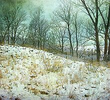 Trees Sky and Snow Fence   by Kathilee