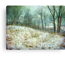 Trees Sky and Snow Fence   Canvas Print