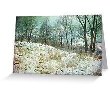 Trees Sky and Snow Fence   Greeting Card