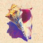 "Seashell Art Print - ""Conch Shell Study"" by Mike Savlen"