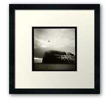 Bird Over Baffin Island Framed Print