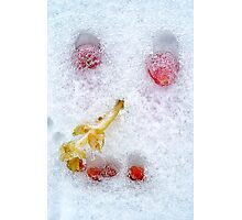 Vegetables And Fruit Snowman Face Photographic Print