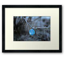 Fishing Bubble  Framed Print