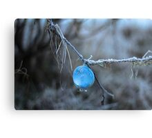 Fishing Bubble  Metal Print