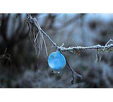 Fishing Bubble  Photographic Print