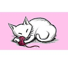 Yarn Kitty - pink edition Photographic Print