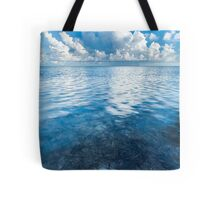Simplicity and the Storm Tote Bag