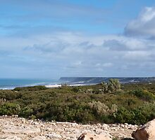 Great Austrailan Bight, via Nullarbor , Ceduna  by Virginia  McGowan