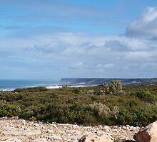 Great Austrailan Bight, via Nullarbor , Ceduna  by Virginia  McGowan