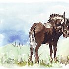Black Wildebeest (Connochaetes gnou) by Maree  Clarkson