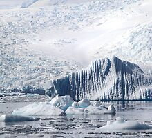 Cierva Cove with Iceberg & Glaciers  by Carole-Anne