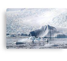 Cierva Cove with Iceberg & Glaciers  Metal Print