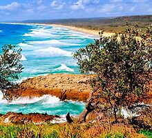 NORTH STRADBROKE ISLAND by Margaret Stevens