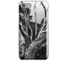 White trees iPhone Case/Skin