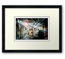 Dalek -  in the hallway. Framed Print