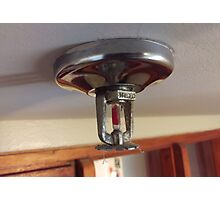 fire sprinkler, c Photographic Print