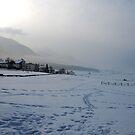 Footsteps in the snow by Arie Koene