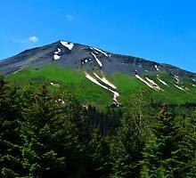 Mt. Marathon  by raymona pooler