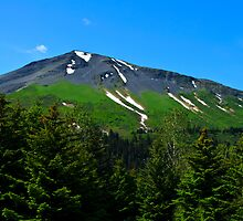 Mt. Marathon  by raymona pooler