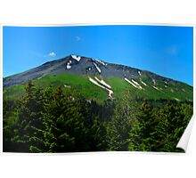 Mt. Marathon  Poster