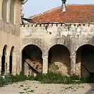 Abandoned House by Segalili