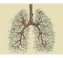 Tree Lungs Photographic Print