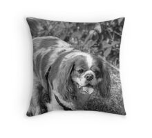 KING CHARLES SPANIEL Throw Pillow