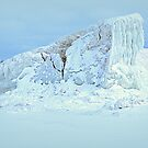 Icy Hill by BarbL
