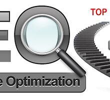 SEO Services At Nd Websolution by Nd-Websolution