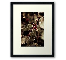 Holly bush with red berries III Framed Print