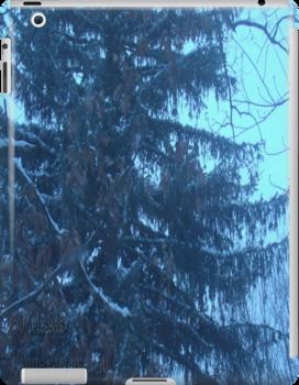 Snow scene by mmoeus