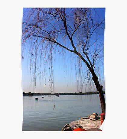 A Tree Leans Over Kunming Lake Poster