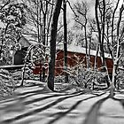 Sheard's Mill Covered Bridge 1873 by djphoto