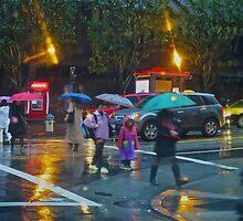 Early Morning Rain SF by David Denny