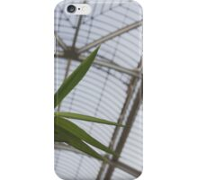 Bamboo and Glass iPhone Case/Skin