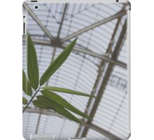 Bamboo and Glass iPad Case/Skin
