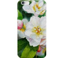 Sakura Cherry Blossom iPhone Case/Skin