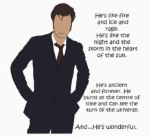 Doctor Who - Fire and Ice and Rage One Piece - Short Sleeve