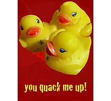A Greeting Card for Ducks Photographic Print