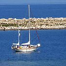 Sail boat by Tom Gomez