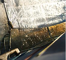 the Shimmering side to Sailing Photographic Print