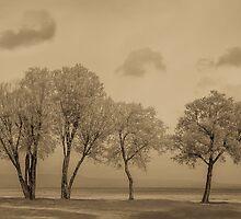 Wind on the beach by TOM KLAUSZ