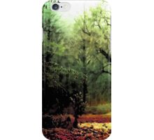Cycle iPhone Case/Skin