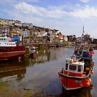 Low Tide at Mevagissey, Cornwall by SaraHardman