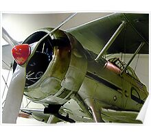 Gloster Gladiator.....one of the last of the few.......! Poster