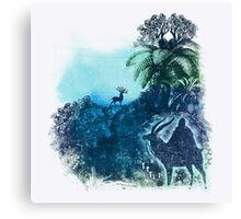spirits of the forest Canvas Print