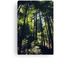 Because You Loved Me Canvas Print